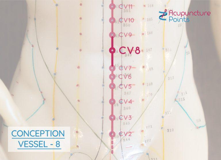 Conception Vessel 8 - Ren 8
