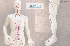 Chong Mo - Chong Mai - Penetrating Vessel