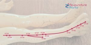 Leg Stomach Channel yuan-source points