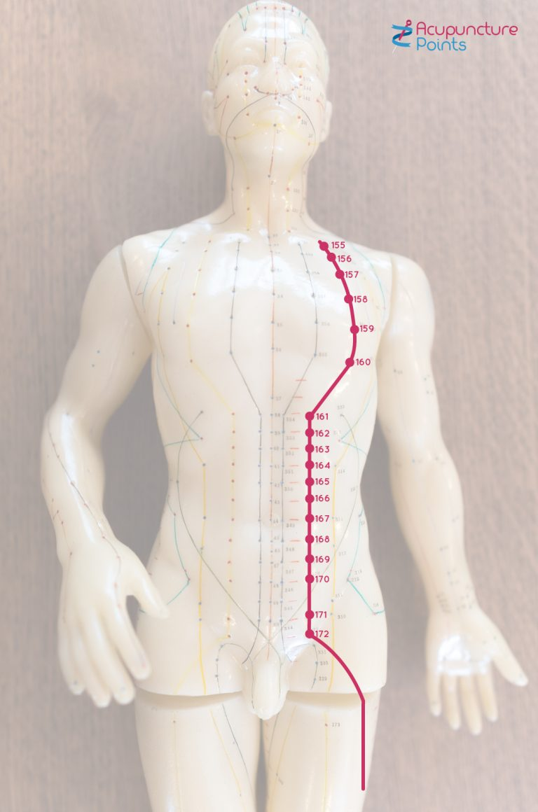 Stomach Channel Points