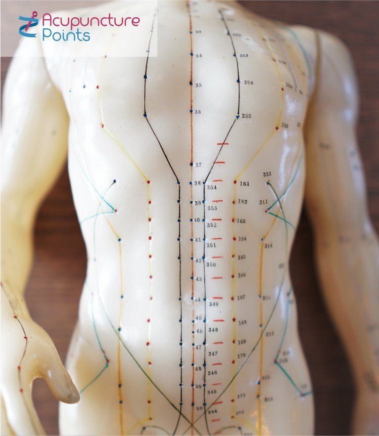 Acupuncture body points on the body