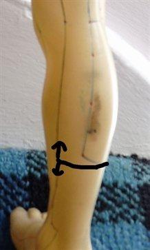bladder luo