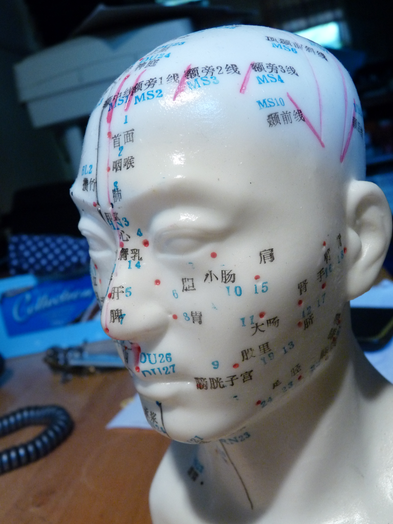 Model head for acupuncture medicine